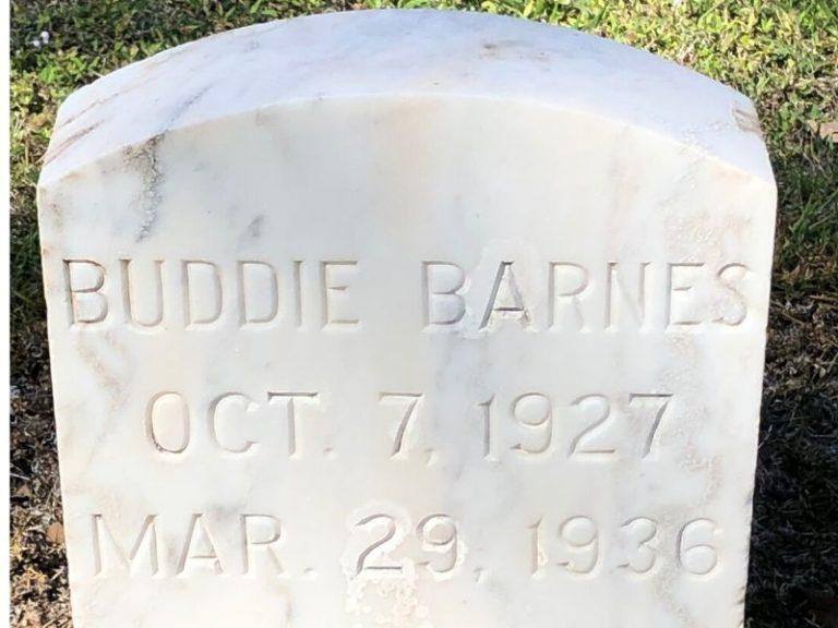 gravestone cleaner