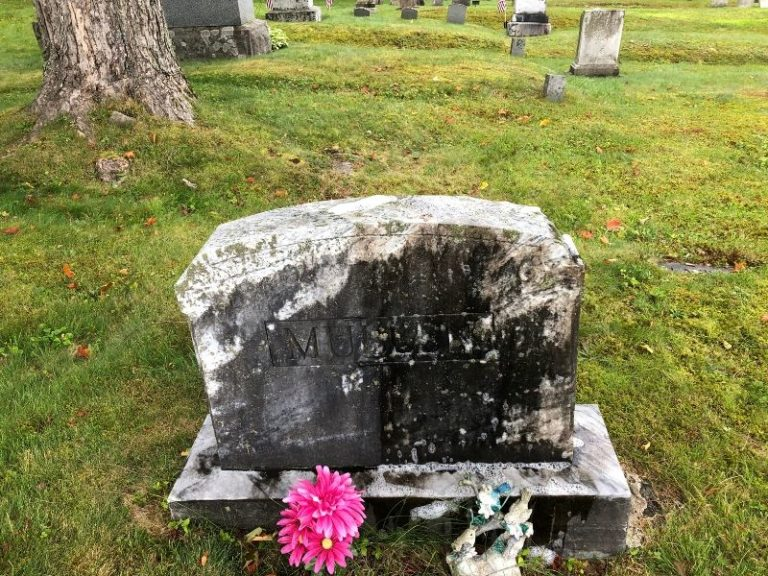 the best gravestone cleaner